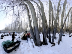 2011-03-00-ranger-teslin-camp-morning-1200x35-51-websized